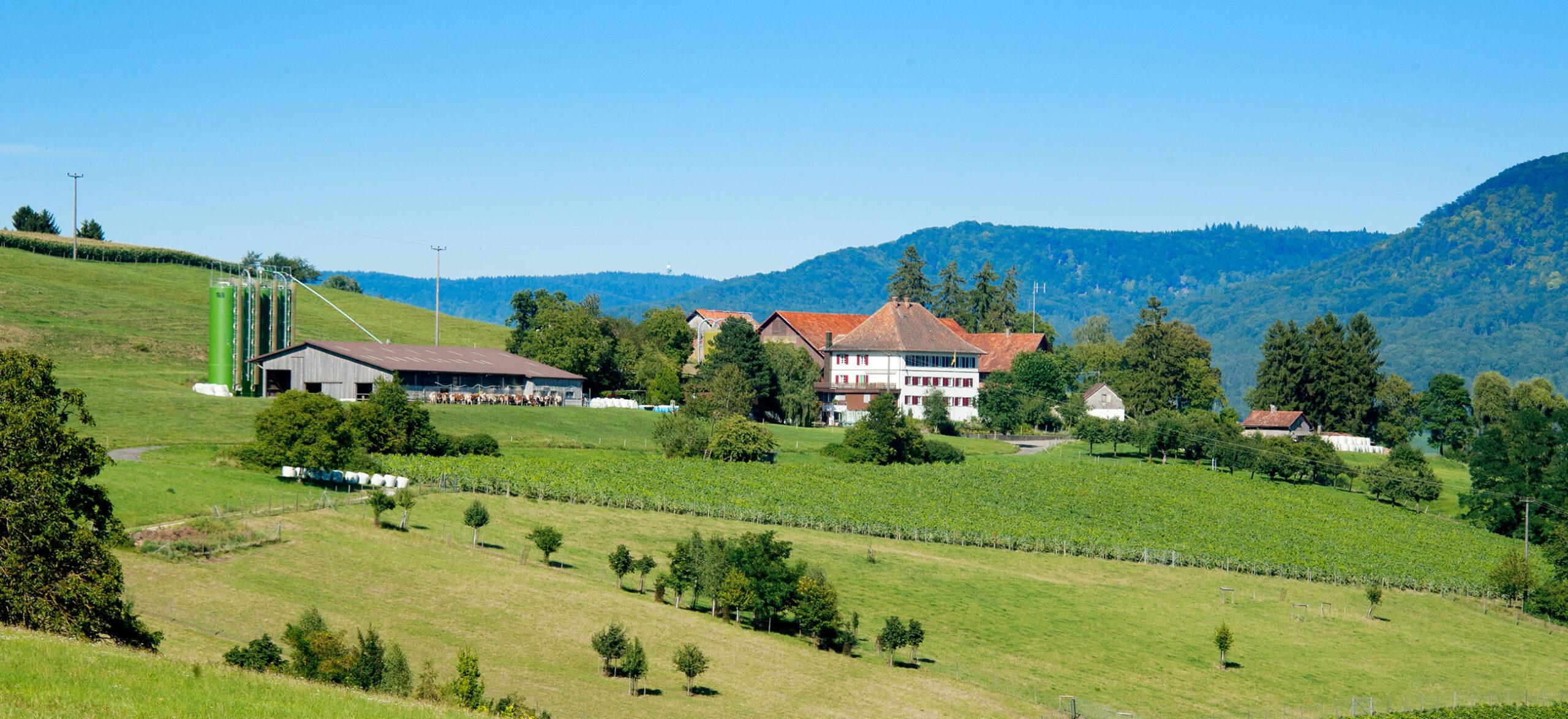 Berghof Hallau Aussicht Gebäude