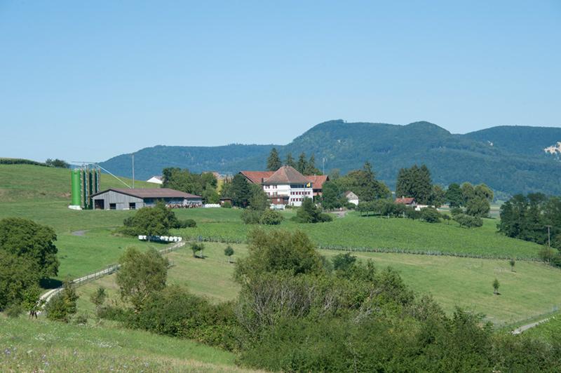 Berghof Hallau Bild vom Berghof Hallau